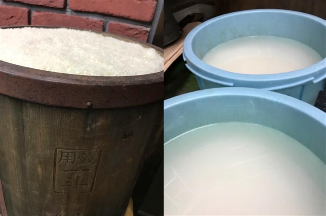 洗米後、樽でお米を浸漬する
